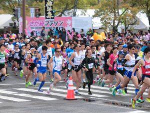 さが桜マラソン 2